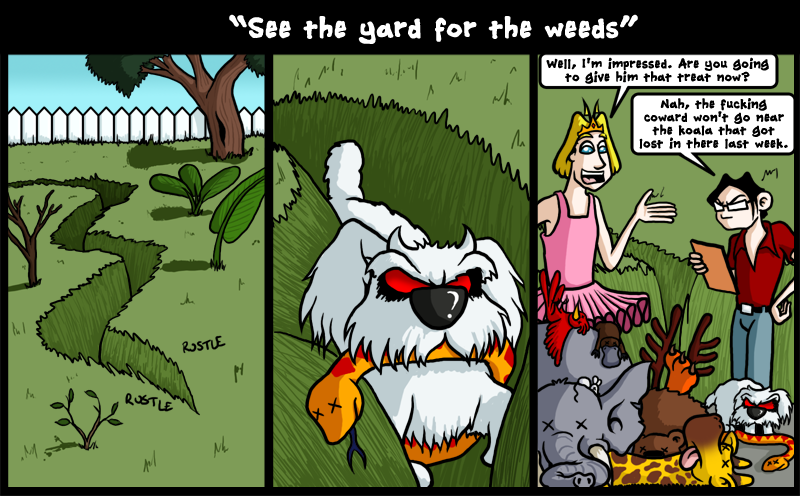See the yard for the weeds